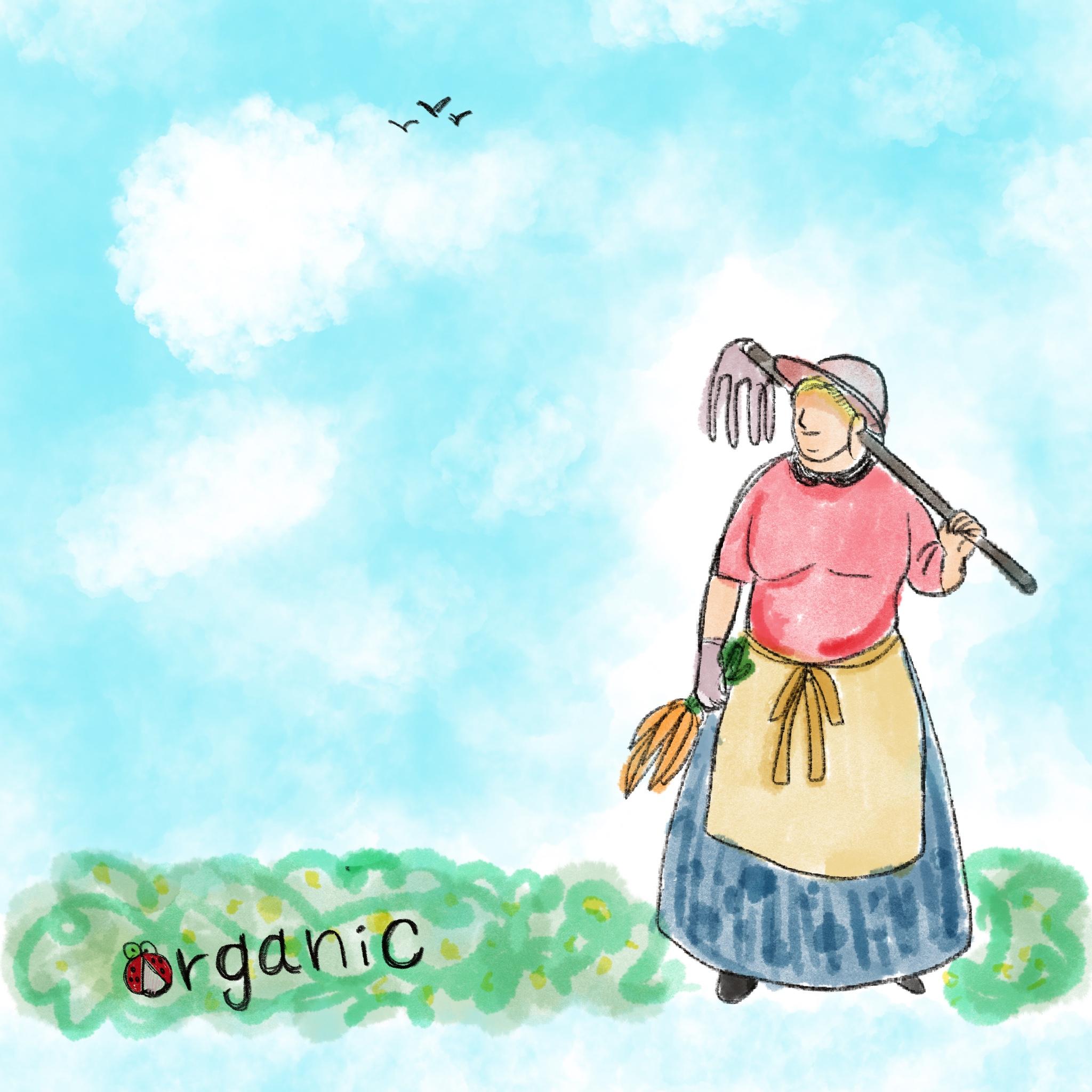 オーガニック(organic)